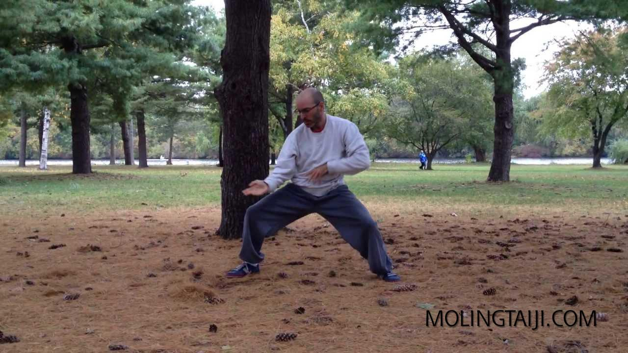 Chen Family Taijiquan on pinecones beautiful fall day in Boston. 陈瑜二十代美国弟子,默灵
