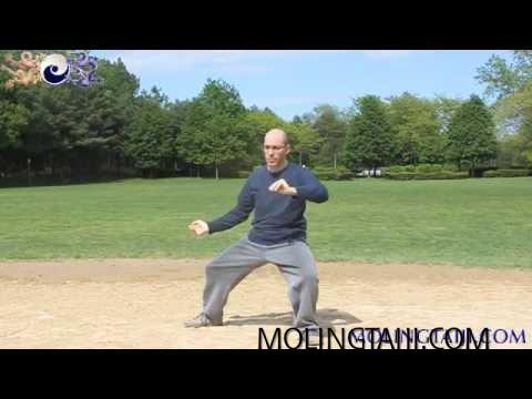 Chen Style Taijiquan Gongfu Frame Late Spring