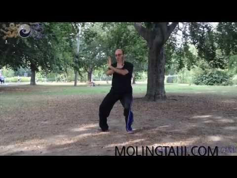 Chen Taijiquan 7 Sequence Extremities