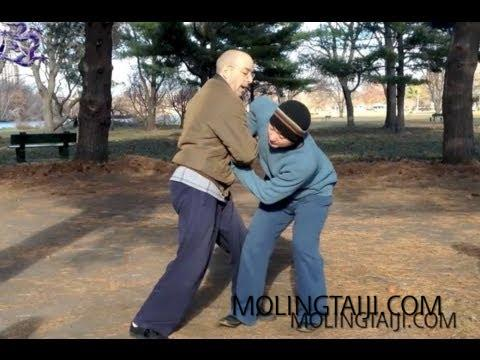 Marin Spivack Chen Taijiquan Form & Method 2012 Series #1