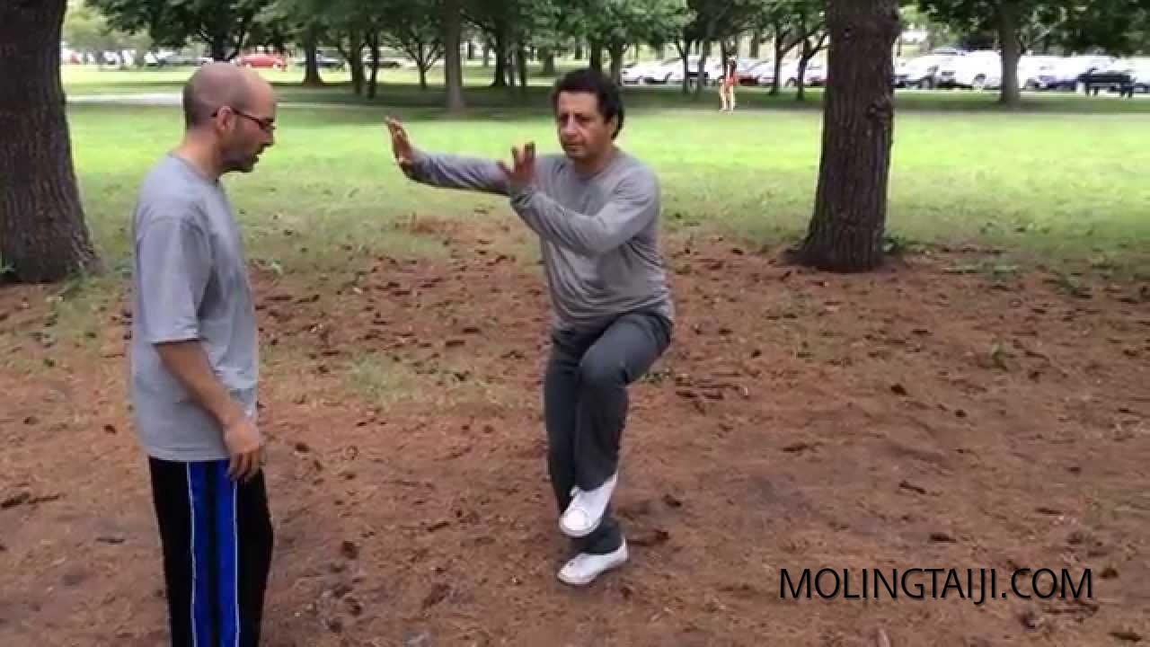 "Traditional Chen Taijiquan ""Kulian"" bitter basics training"