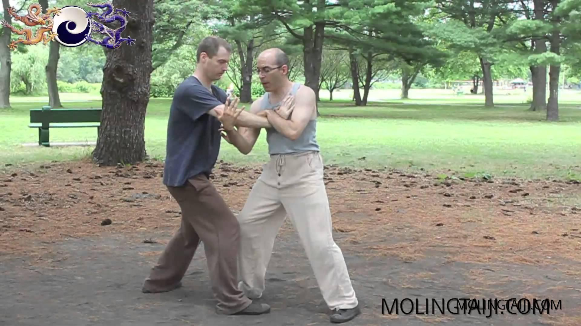 Tuishou Axis Application from Tuibu Yazhou