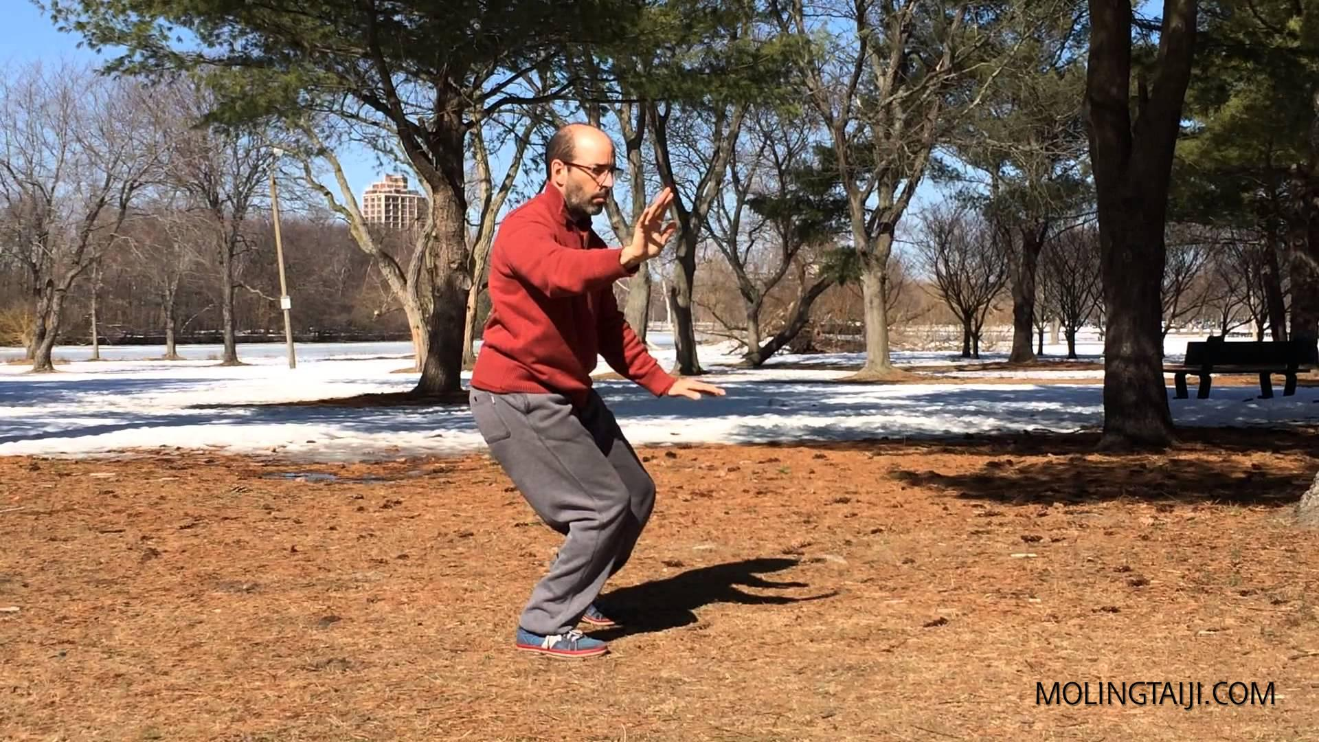 Two slightly different feelings of Chen Taijiquan Yilu as the seasons changed