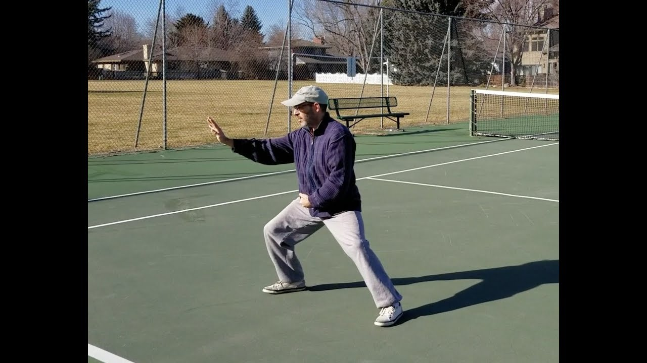 Marin Spivack Chen Taijiquan Gongfu Jia Fort Collins CO Workshop #2 highlights