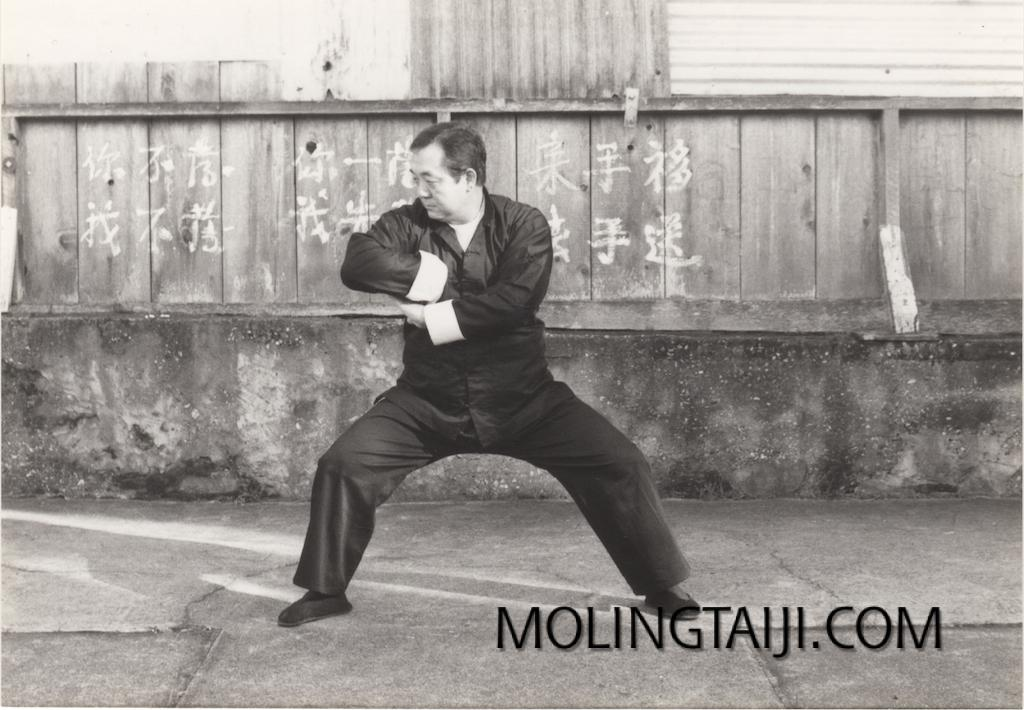 'Gene' Chen Jinhong; Chen Taijiquan Practitioner, Teacher, Adventurer