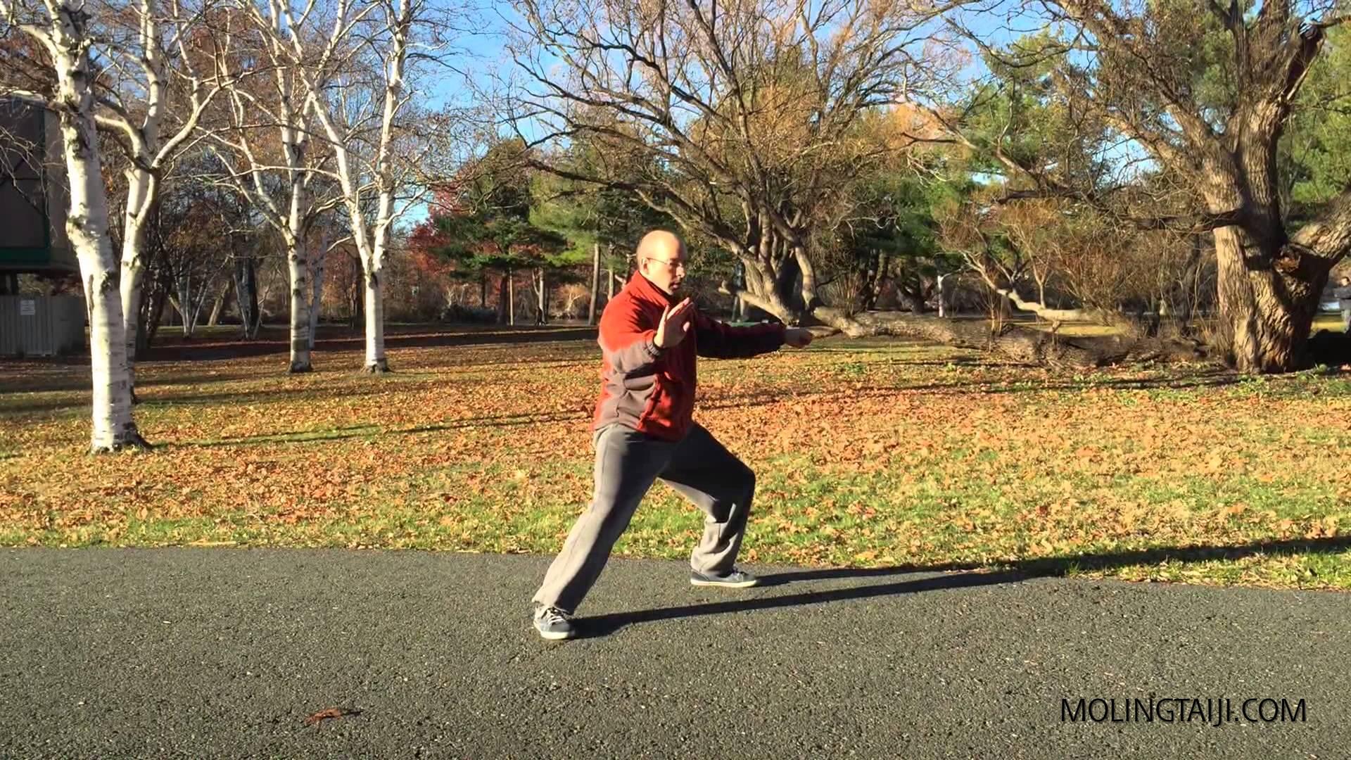 Marin Spivack 2014 11.11 Chen Taiji Erlu Quan