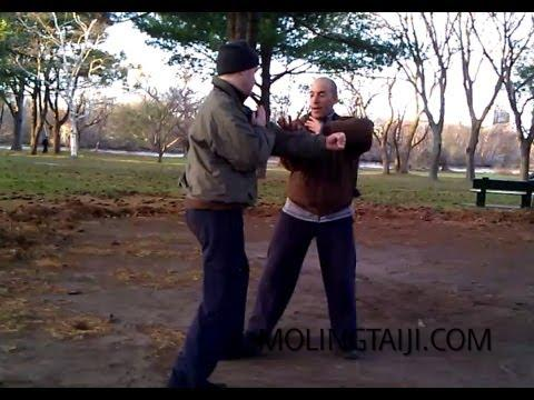 Chen Taijiquan Form & Method 2012 #6