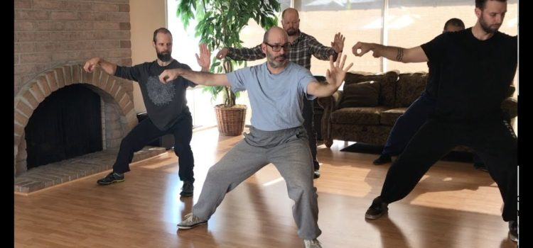 Marin Spivack Chen Taijiquan Gongfu Jia Fort Collins, CO 11-2018 Snippets 陈氏太极拳
